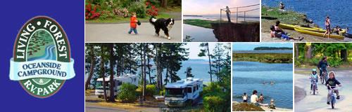 living forest oceanside rv campground. Black Bedroom Furniture Sets. Home Design Ideas